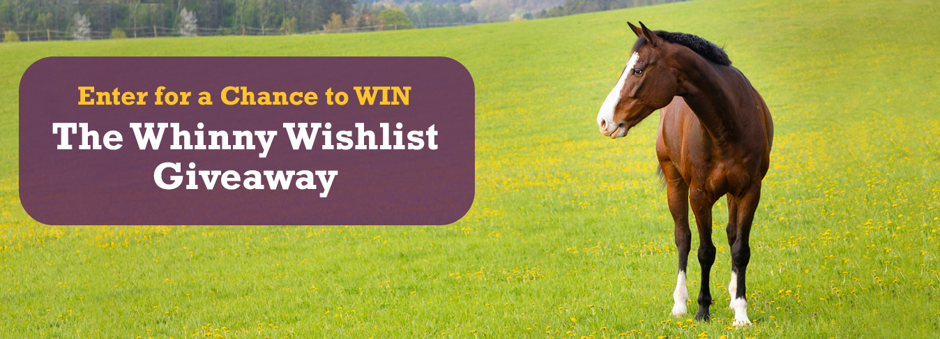 19-10033_HH_Whinny_Wishlist_Giveaway_Set2_1348x486_Landing Page